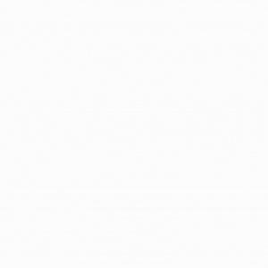 gresie alba mata 25x25 cm portelanata