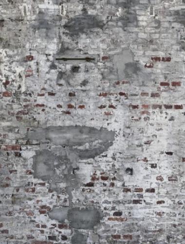 COD 445404 - 418 x 300 cm   - Tapet stil industrial cu aspect de beton si caramida aparenta