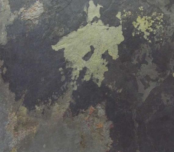 Ardezie flexibila pentru placari murale