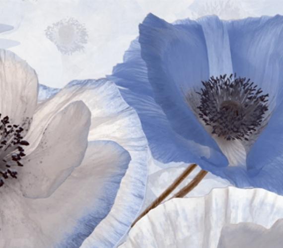 Decor faianta flori albastre PEONIA 20x60 cm CELESTE P1