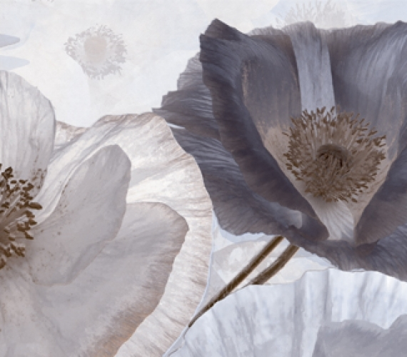 Decor faianta flori gri PEONIA 20x60 cm GRIS P1