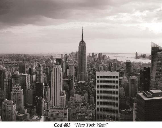 fototapet-alb-negru-peisaj-new-york-cod-403
