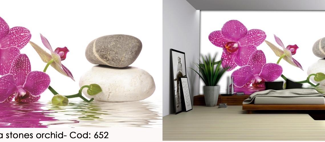 Fototapet feng shui orhidee mov