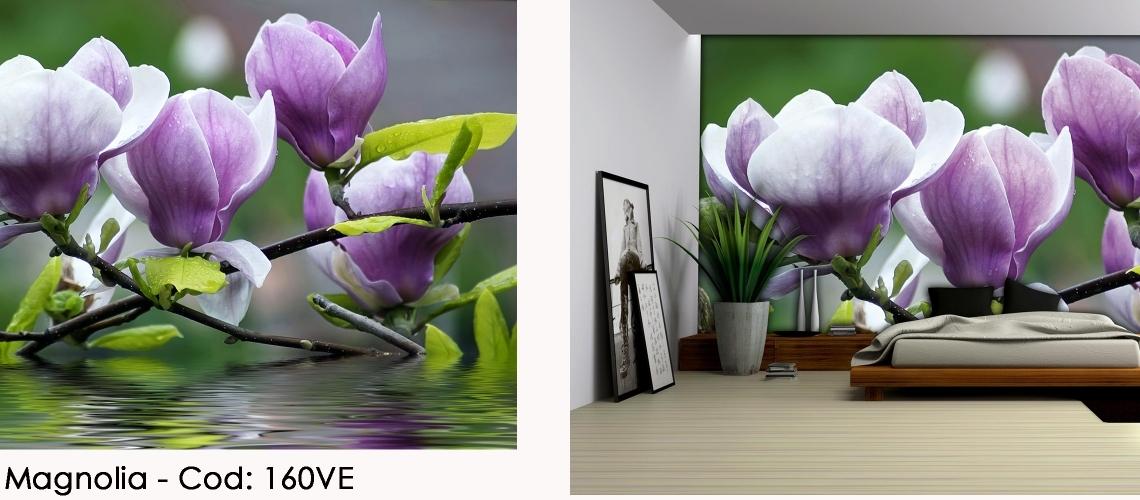 Fototapet magnolie