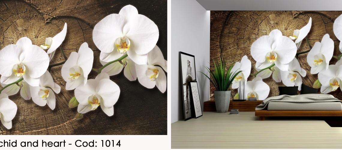 Fototapet orhidee alba cod 1014