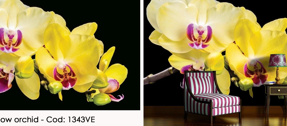 Fototapet orhidee galbena