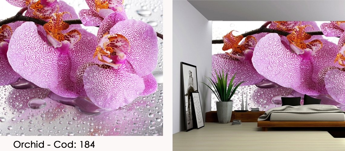 Fototapet spa orhidee roz