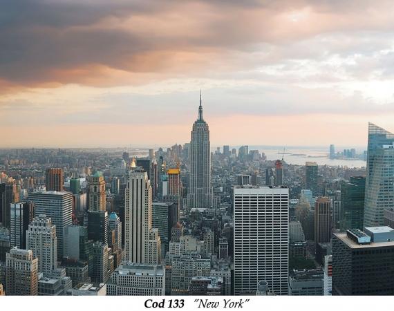 fototapet-peisaj-new-york-cod-133
