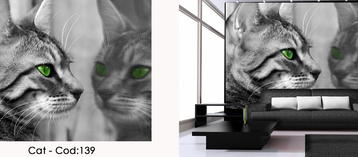 Fototapet pisica cu ochi verzi