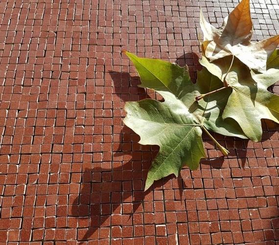 mozaic-ieftin-italia-lichidare-de-stoc-cere-bordeaux