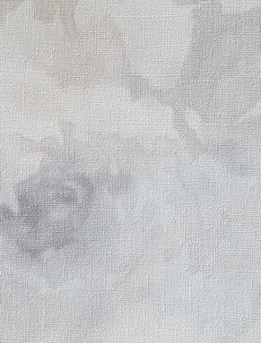 Tapet-din-vinil-lavabil-gama-FLORENTINE-2-imag-12